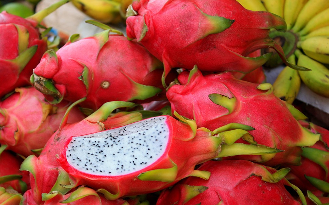 Connaissez-vous… le fruit du dragon ?