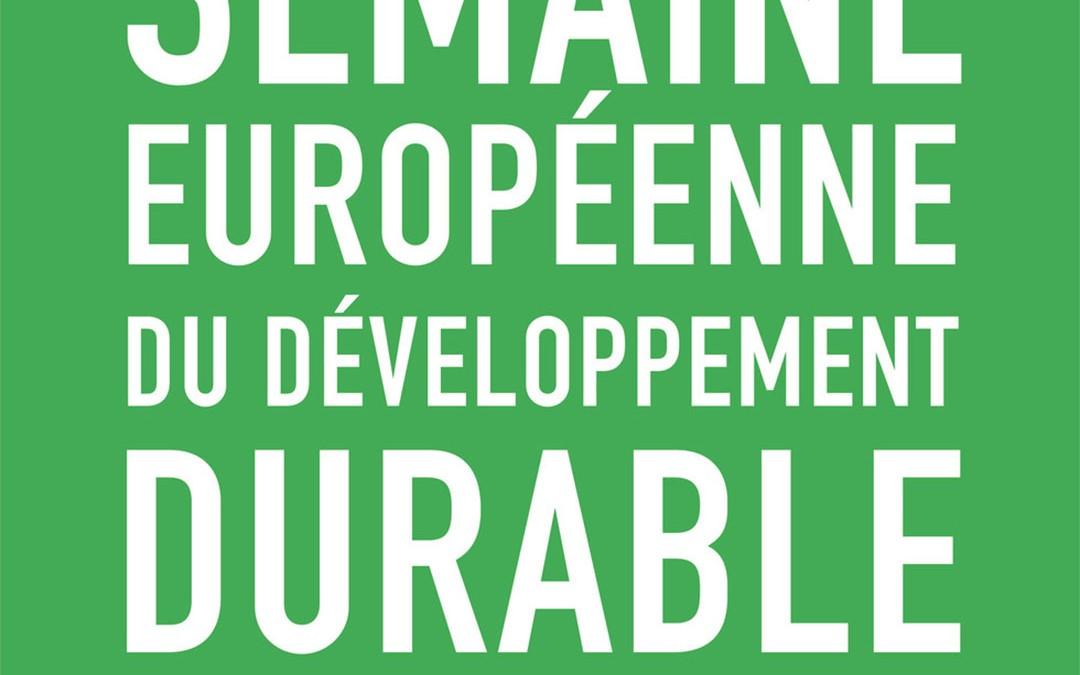 Semaine du Développement durable : que faire en entreprise ?