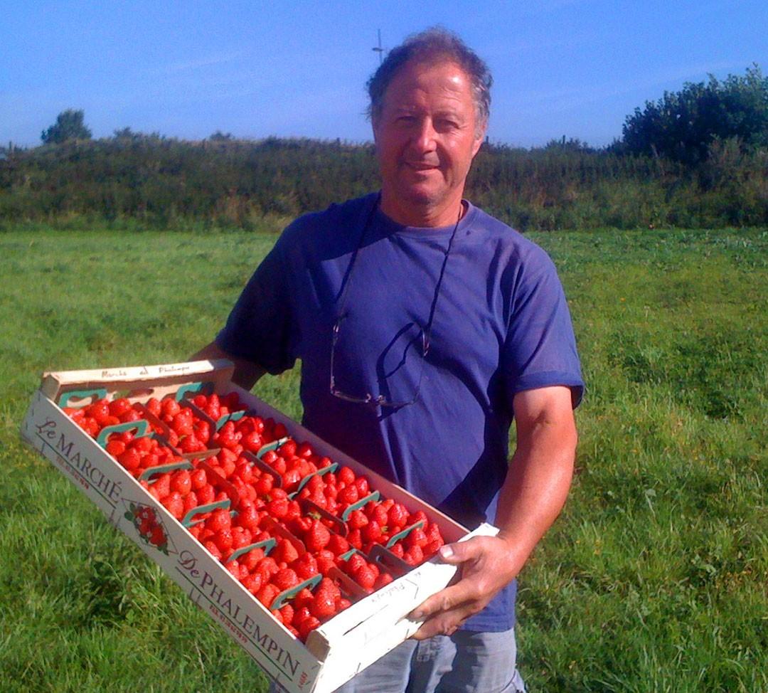 Étienne, notre producteur de fraises