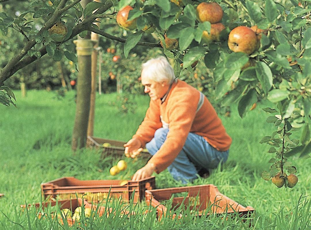 Christian, notre producteur de jus de fruits