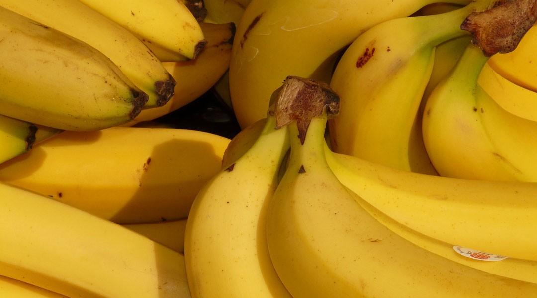 Les fruits et légumes du mois : janvier