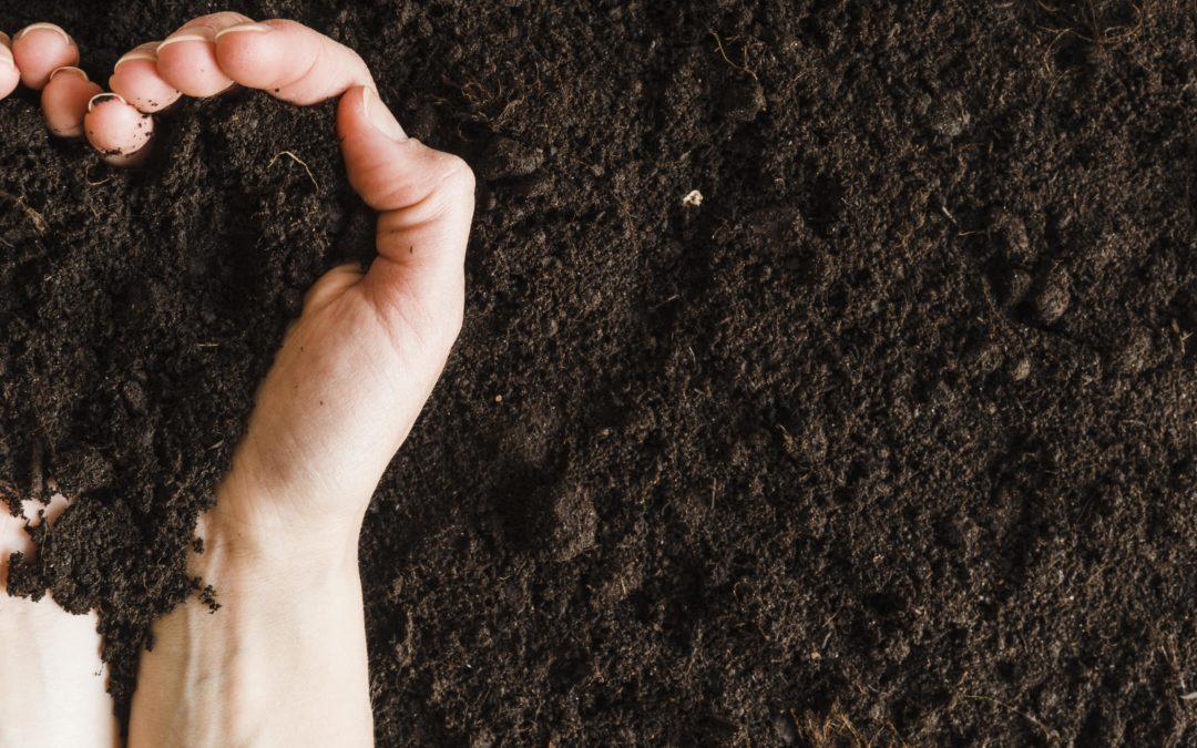 Les clés pour apprendre à réaliser son compost domestique