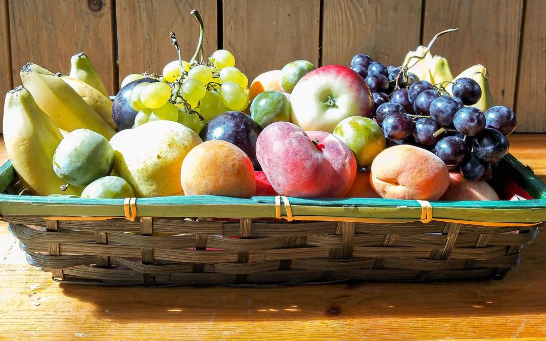 Corbeille de fruit «petit prix»